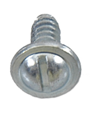 1964-1972 LICENSE PLATE SCREW, EACH